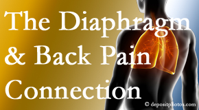 Amelia Chiropractic Clinic recognizes the relationship of the diaphragm to the body and spine and back pain.