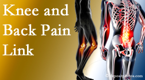 Amelia Chiropractic Clinic treats back pain and knee osteoarthritis to help prevent falls.