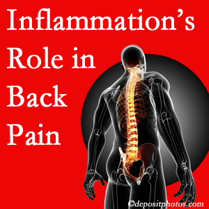 The role of inflammation in Fernandina Beach back pain is real. Chiropractic care can help.