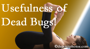 Amelia Chiropractic Clinic finds dead bugs quite useful in the healing process of Fernandina Beach back pain for many chiropractic patients.