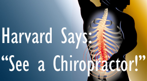 Fernandina Beach chiropractic for back pain relief urged by Harvard