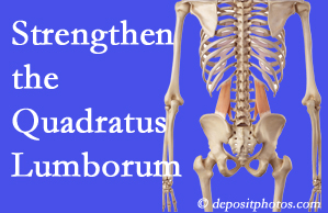 Fernandina Beach chiropractic care offers exercise recommendations to strengthen spine muscles like the quadratus lumborum as the back heals and recovers.